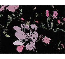 Apple Blossom Ink Photographic Print