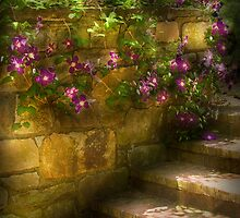 Clematis and Stairs by Mike  Savad