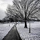 Path by Brian Walter