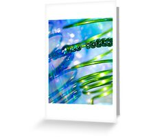 Light and Spring.  Greeting Card