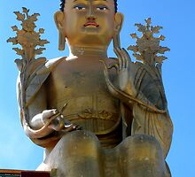 sky buddha. ladakh, india by tim buckley | bodhiimages