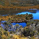 Lake Dove,  Tasmania by bevanimage