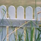 Picket Fence by Cydell