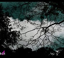 Cloudy Autumn by Afrizal Novian Baharsyah