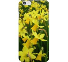 """A Host Of Golden Daffodils"" iPhone Case/Skin"