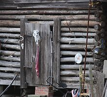 This Old Corn Crib by madman4