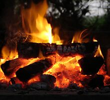 Good old South African braai fire by Shaun Swanepoel