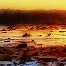 Conowingo Sunrise by capizzi