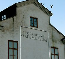 STADSMUSEUM: BIRDS ON DISPLAY by The  Republic Of Media
