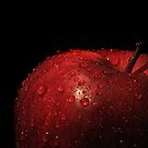 Apple by Steve  Taylor