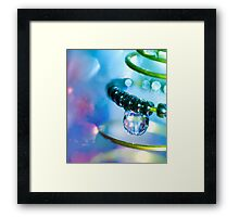 Water and Spring.  Framed Print