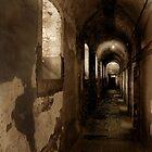 Plunkett's Passage by ragman