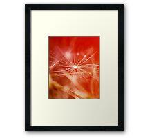 Starburst.  Framed Print