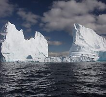 The bergs by Michelle Dry