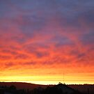 Sunrise Mid January by Julie Sherlock