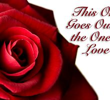 Valentine Card - To the one I love Red Rose by alphotos