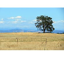 California Country Photographic Print
