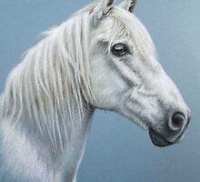 White Stallion by Nicole Zeug