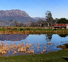 Panaromic MT Roland, Tasmania - Just outside of Sheffield by Critical  Vision