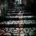 Steps by Gal Lo Leggio