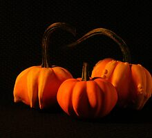 Mini Pumpkins by mklue