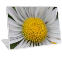 daisies in spring Laptop Skin