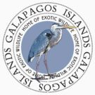 Galapagos Islands Great Blue Heron by Zehda