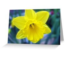 Vibrant Golden Daffodil Greeting Card