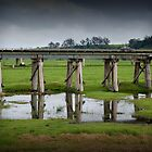 Orbost Trestle Bridge, East Gippsland by Ashpix