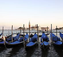 Row of Gondolas in Venice by Sheila Laurens