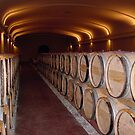 "Cellar of  "" Domaine de Chevallier""  Léognan   (Bordeaux) by 29Breizh33"