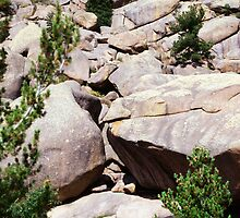 Huge Wyoming Rocks by Tex Smock