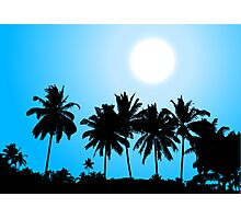 Tropical sunset, palm tree silhouette Photographic Print
