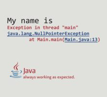 Java, always working as expected. by jjurm