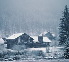 Snowing In Aspen  by Tex Smock