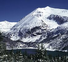 Snowy Colorado Mountain  by Tex Smock