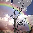 Sedona Rainbow by George Lenz