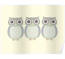 Cool Owl Trio Poster
