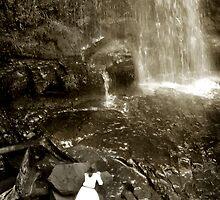 At Erskine Falls, Lorne by Roz McQuillan