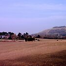 Downland View by mikebov