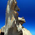 Remarkable Rocks by Wayne England