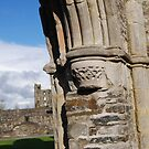 Detail of Mellifont Abbey by Paula Cowley