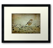 His Eye is on the Sparrow Framed Print