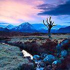 Winter Sunset, Rannoch Moor, Highlands, Scotland by fineartphotos
