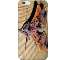 taking a bow after a spledid performance iPhone Case/Skin