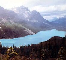 Peyto Lake: Baniff National Park ~ British Columbia Canada by Larry Llewellyn