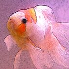 Goldfish Sketch by Maria Schlossberg