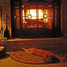 Relaxing by the Fire by Cathy Klima