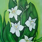 white on green by Sally Carter