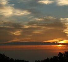 Good Morning World #2 by JordanRyan